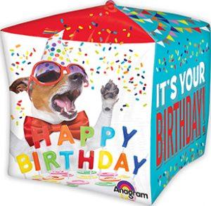 4919 Birthday Pets Cubez